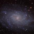 M33,                                Dan Kusz