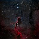 IC-1396 Bicolor,                                Craig Prost