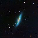 Messier 82 - Cigar Galaxy,                                Tertsi