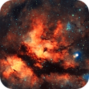 IC1318,                                Steve