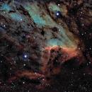 Pelican Nebula in SHO narrowband,                                Tom