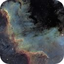 Cygnus Wall - North America Nebula,                                Olivier Ravayrol