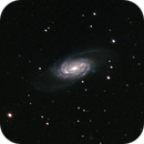 NGC2903,                                Rich