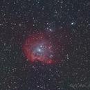The Monkey Head Nebula, NGC 2174,                                raf2020
