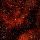 IC 1318 Cygnus Région,                                Maxou034