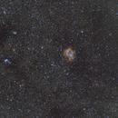 Widefield Rosetta Nebula,                                Siegfried