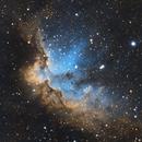 Wizard Nebula, NGC 7380,                                Pat_Bourque