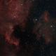 NGC7000 and IC5070,                                Wilsmaboy