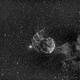 Jellyfish Nebula,                                Tareq Abdulla