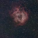 Rosette Nebula, NGC2238,                                spaceartic