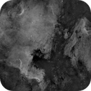 North America and Pelikan Nebulae,                                Stellario