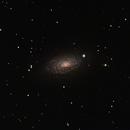 M63 Sunflower Galaxy,                                William Brown