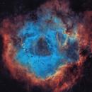 SHO Palette Rose Nebula with RGB Stars,                                Chris King