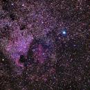 North America Nebula,                                Francisco