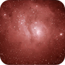 The Lagoon Nebula,                                SkipRapp