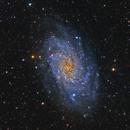 M33,                                whitenerj