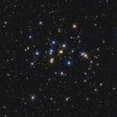 The Beehive Cluster, M44,                                Neven Krcmarek