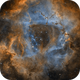 The Rosette Nebula in SHO (Modified),                                Alex Roberts