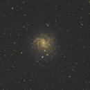 Fireworks Galaxie NGC 6946,                                Detlef Möller