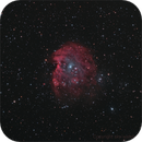 NGC 2174   Monkey Head Nebula,                                sky-watcher (johny)