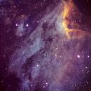 Pelican IC5070,                                Lynn K