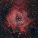 Rosette Nebula C49,                                CarlosSagan