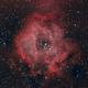 Rosette Nebula C49,                                CarlosAraya