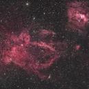 Lobster Claw Nebula Ha+ OSC Limited (SH2-157),                                Brandon Tackett