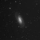 NGC 2903,                                juba