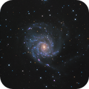 M101,                                Robert Habolin