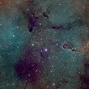Elephant Nebula,                                JoeCheng
