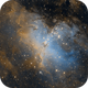 M16 - The Eagle Nebula,                                pmumbower