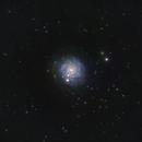 NGC 3344 The Sliced Onion Galaxy,                                JohnAdastra