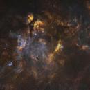 Cygnus Region in Widefield,                                Ethan Wong