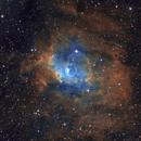 NGC 7635 SHO - Bubble Nebula,                                Zheng Fu