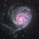 M101 Pinwheel Galaxy,                                David Kennedy