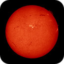 22 June 2015 sun,                                Andy Devey