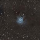 NGC 7023,                                HansTrapp