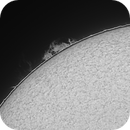 Sun in Halpha - January 13, 2021,                                JDJ