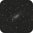 Pegasus Dwarf Irregular Galaxy - UGC12613,                                Jan Sjoerd de Vries