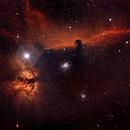 Barnard 33 - The Horsehead Nebula,                                Timothy Martin & Nic Patridge