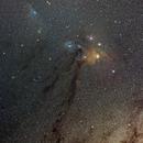 Rho Ophiuchus Cloud Complex,                                Max