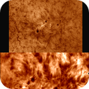 Ha Quark captures 19-4-2021,                                Steve Ibbotson
