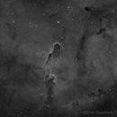 IC1396 The Elephant's Trunk in Ha,                                Chris