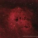 NGC 1893 / IC 410 / SH2-236 / LBN 807 w/SIM 129/130 (Tadpoles),                                Ron Bokleman