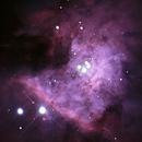 M42 Core,                                Luis Amiama