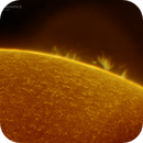 Solar Prominence in Hydrogen Alpha 02-19-2017,                                Martin (Marty) Wise