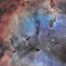 IC1396 SHO,                                Starlord2407