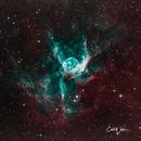 NGC 2359  Thor's Helmet,                                Carl Weber