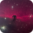 Barnard 33 (IC 434) - The Horsehead Nebula,                                Insight Observatory